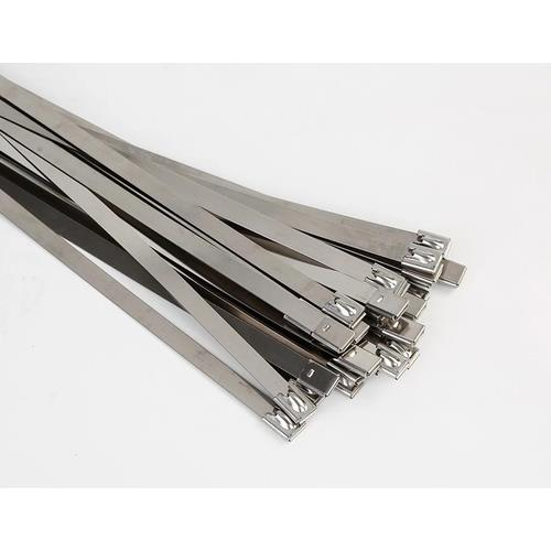 FIRE ACCY ties 200 x 4.6 S/Steel 100Pk